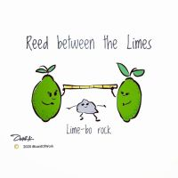 Reed between the Limes